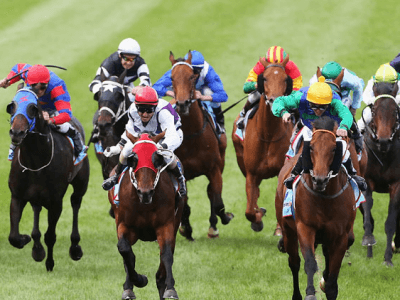 Tips for Horse Races punters on Bet365